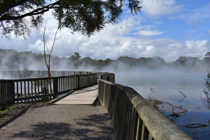 Lago Nuova Zelanda steam immagini stock