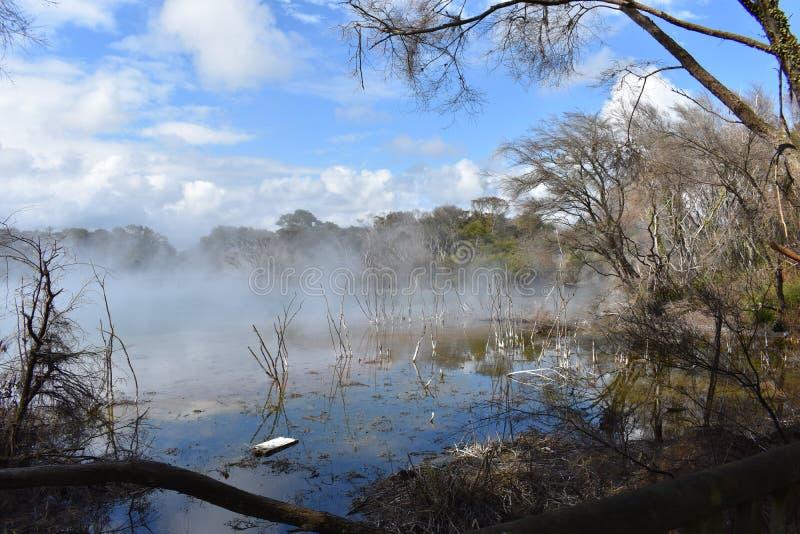 Lago Nuova Zelanda steam fotografia stock