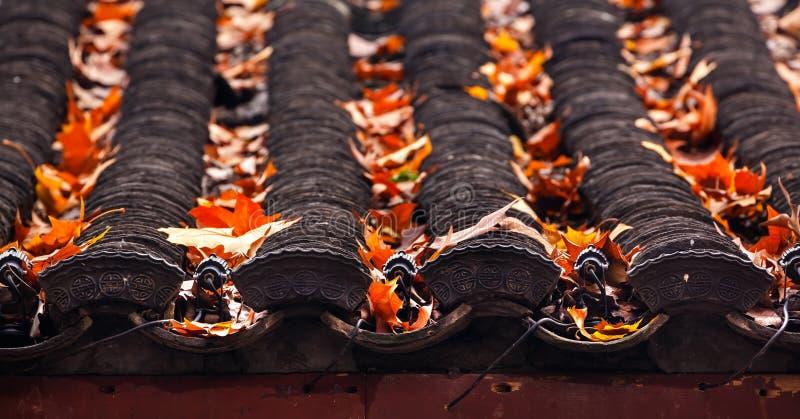 Lago ocidental chinês antigo Hangzhou China tiles de telhado da casa fotos de stock