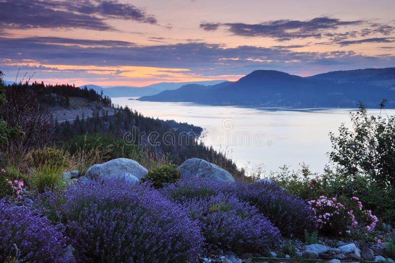 Lago Okanagan ad alba immagini stock libere da diritti