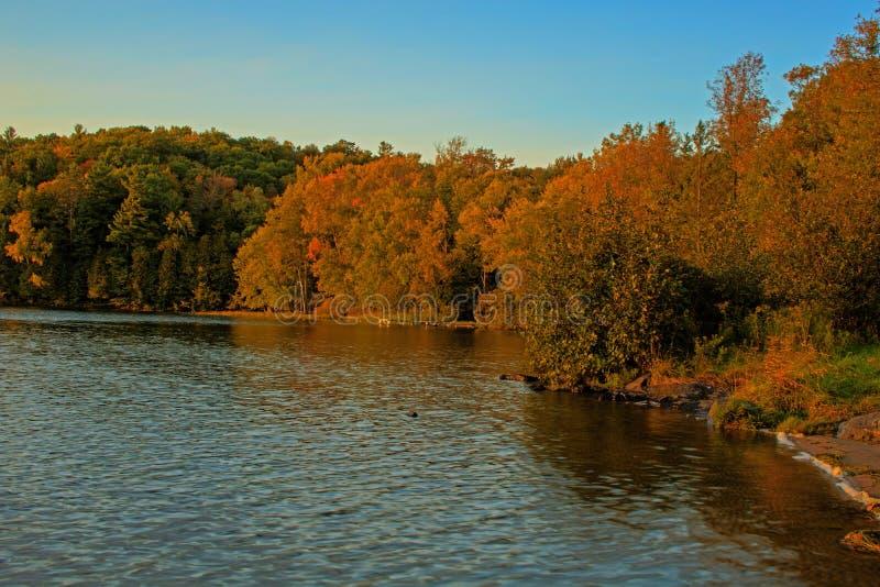 Lago ontario en la puesta del sol en otoño fotos de archivo libres de regalías