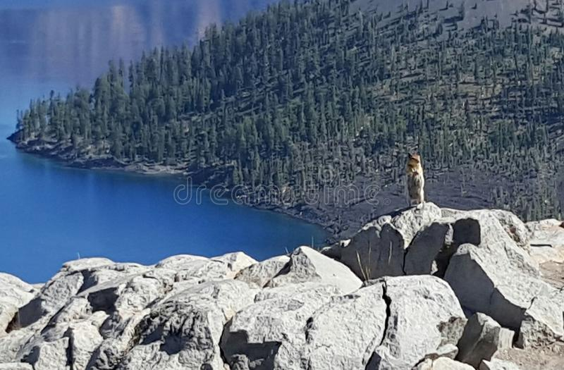 Lago Oregon crater fotos de stock royalty free