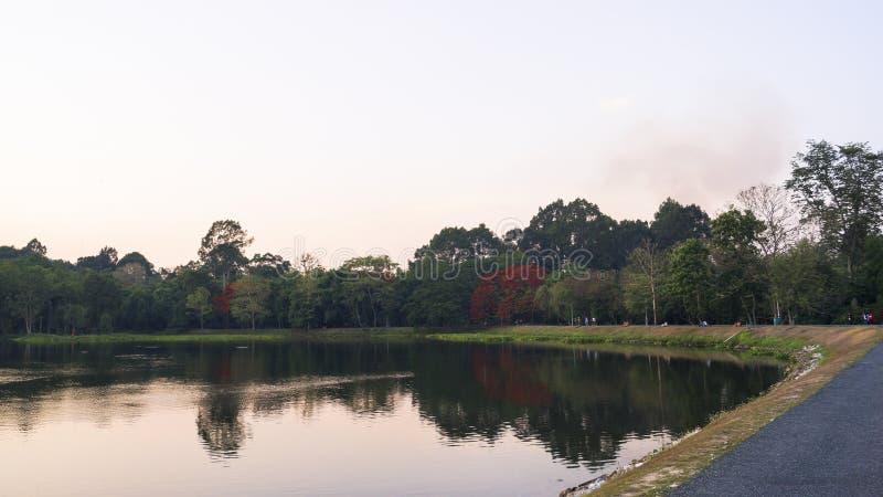 Lago pacífico foto de archivo libre de regalías