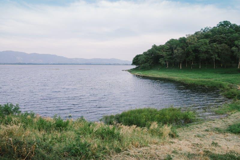 Lago pacífico en día nublado imágenes de archivo libres de regalías