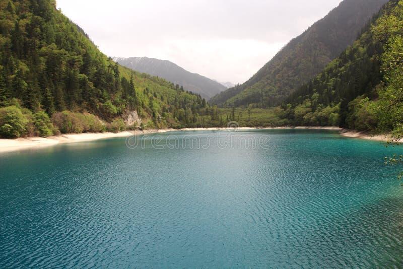 Lago panda fotos de archivo libres de regalías