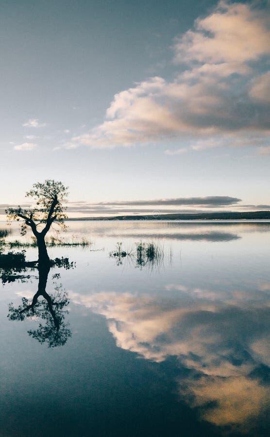 Lago paraguayo Ipokarai fotos de archivo libres de regalías
