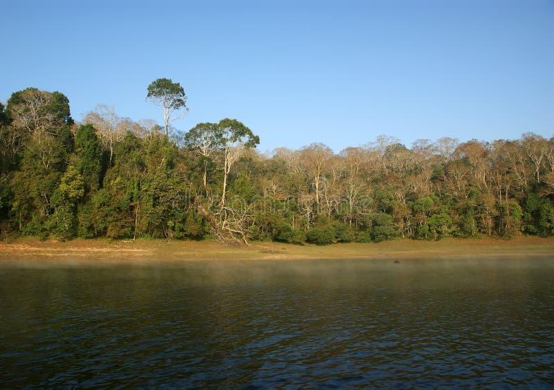 Lago, parco nazionale di Periyar, Kerala, India fotografie stock libere da diritti