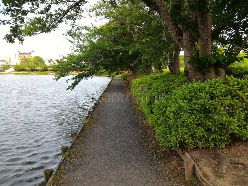 Lago pareggiante del lato di modo del parco di esercizio di sport fotografia stock