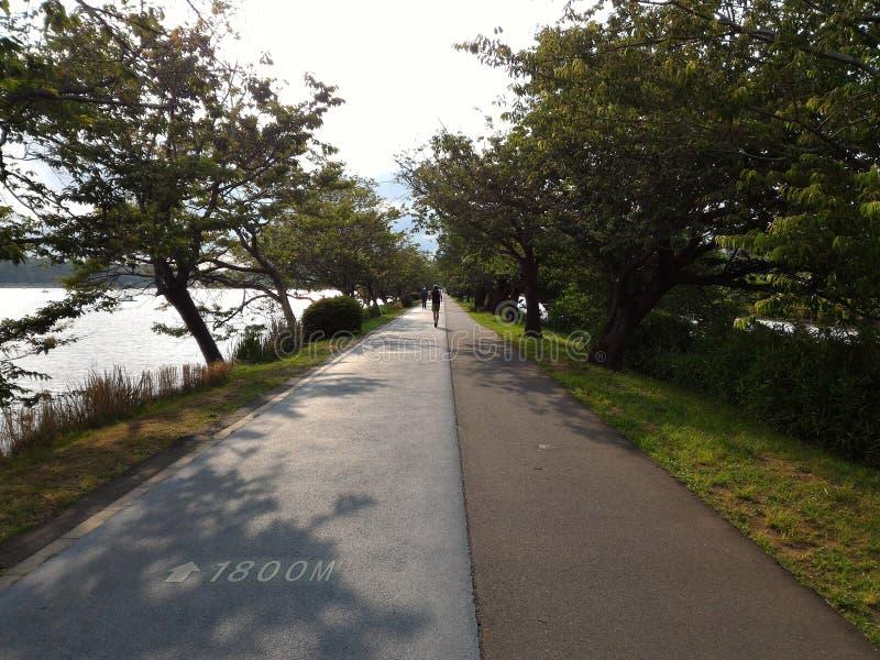 Lago pareggiante del lato di modo del parco di esercizio di sport fotografia stock libera da diritti