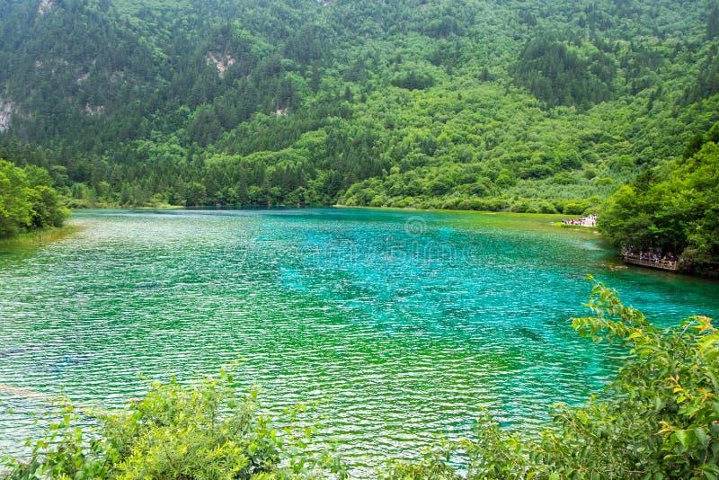 Lago peacock, uno del lago más grande del parque nacional de Jiuzhaigou fotografía de archivo libre de regalías