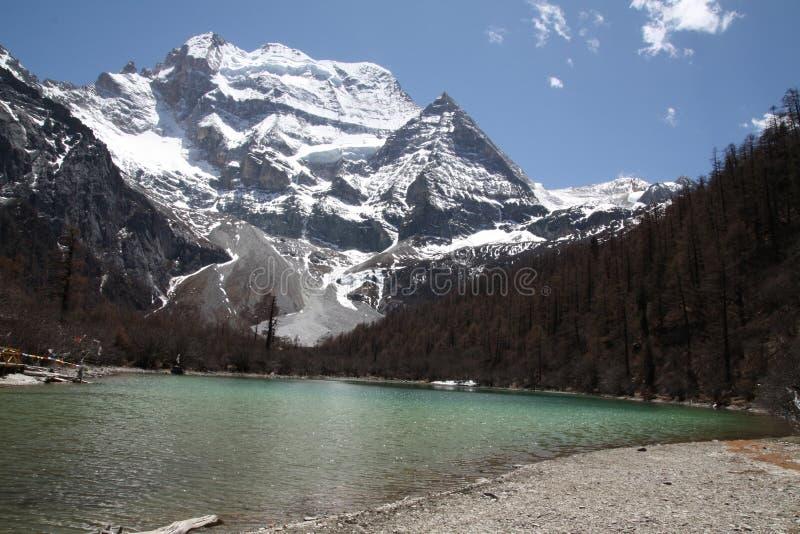 Lago pearl del Tibet fotografia stock