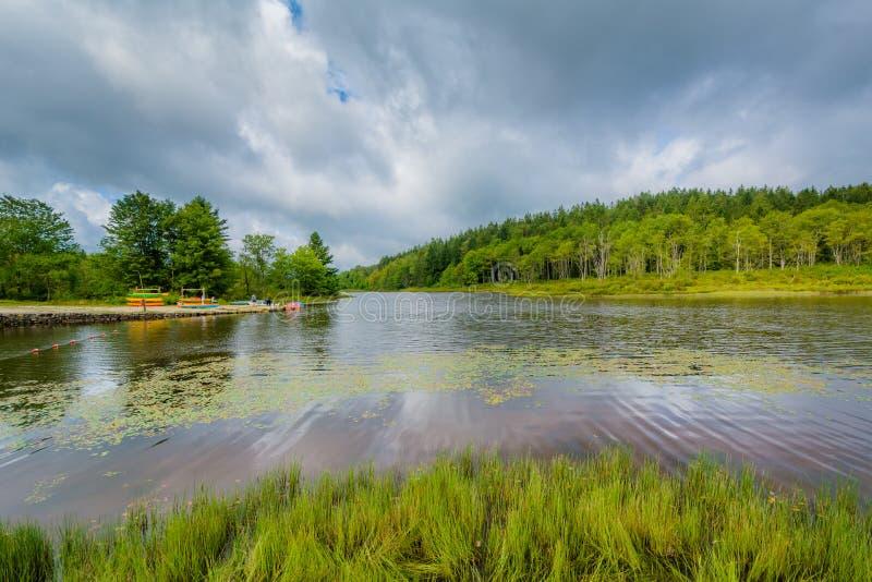 Lago Pendleton, en el parque de estado de las ca?das del Blackwater, Virginia Occidental imagen de archivo libre de regalías