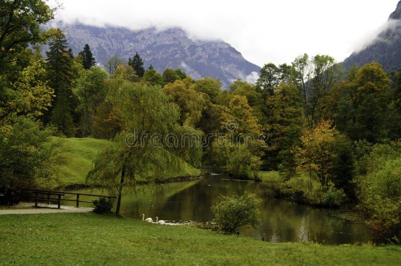Lago pequeno imagens de stock royalty free