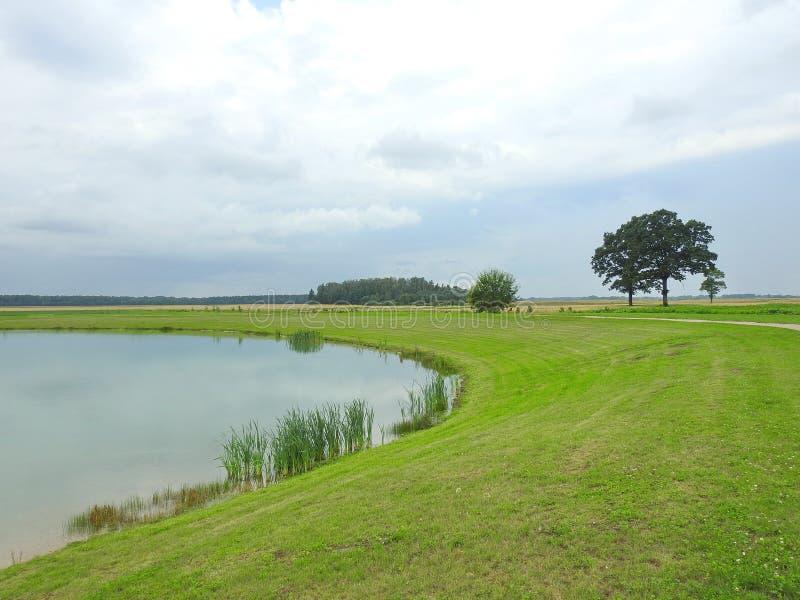 Lago pequeno e árvores no parque, Lituânia imagem de stock