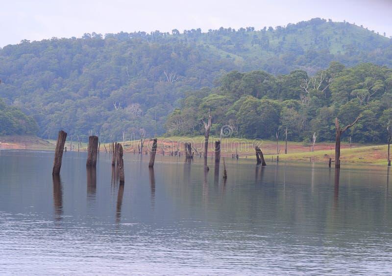 Lago Periyar con le colline nel fondo, Thekkady, Kerala, India immagini stock