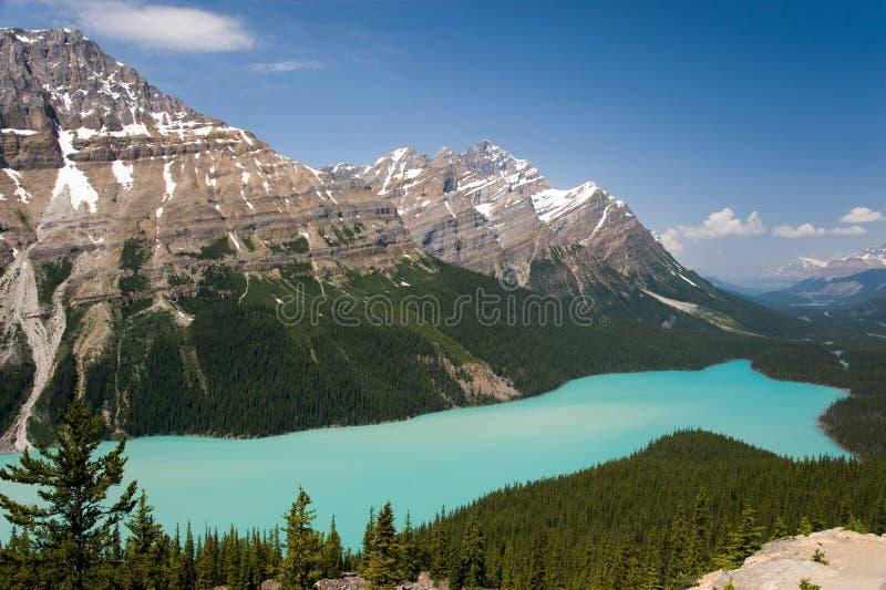 Lago Peyto, Alberta, Canadá imagens de stock royalty free