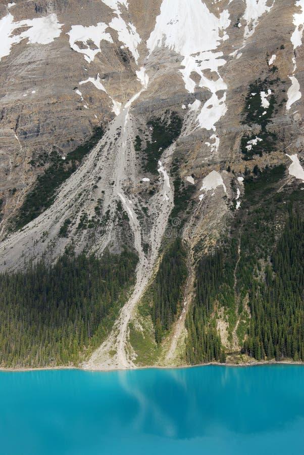 Lago Peyto e pendio di montagna fotografia stock libera da diritti