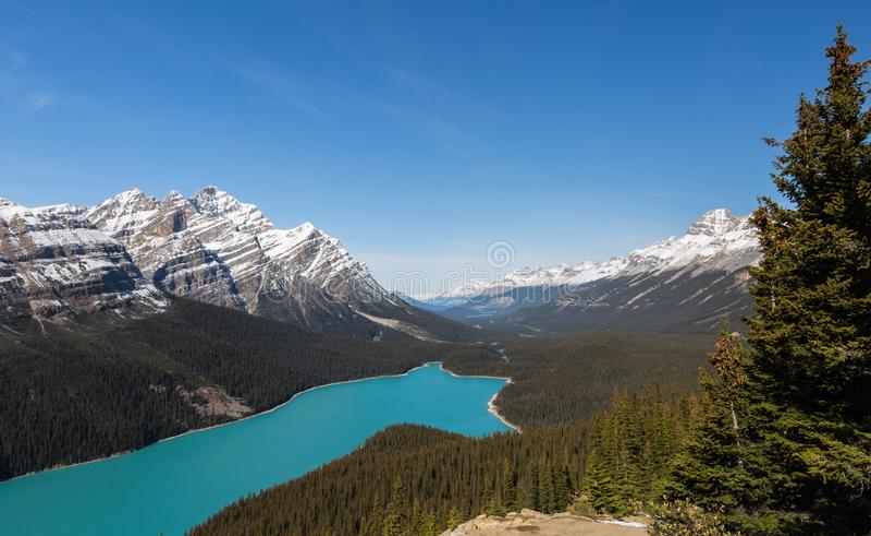 Lago Peyto e pico da caldeira fotografia de stock royalty free