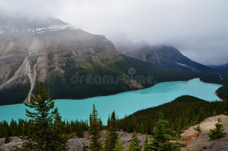 Lago Peyto en Alberta fotos de archivo