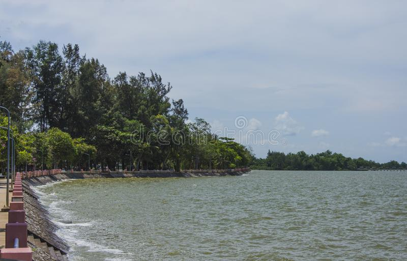 Lago Phatthalung Tailandia Lampam fotos de archivo libres de regalías