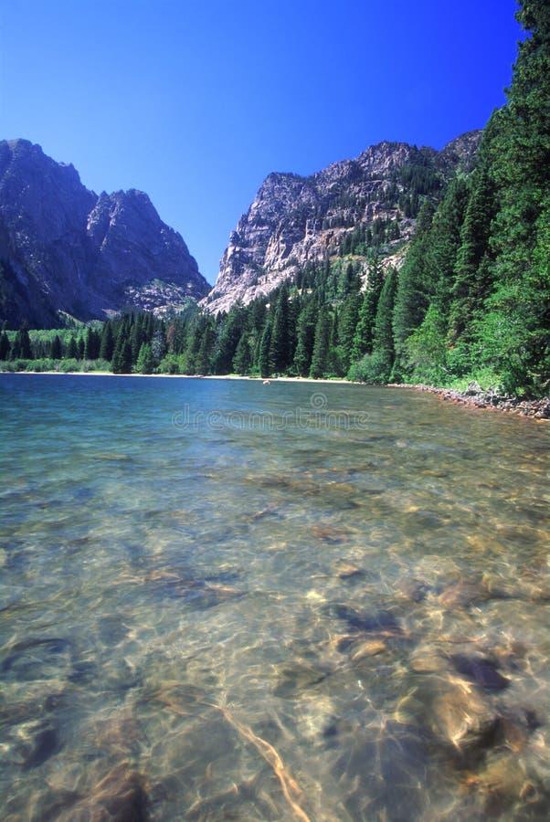 Lago Phelps - Tetons grande imagem de stock royalty free