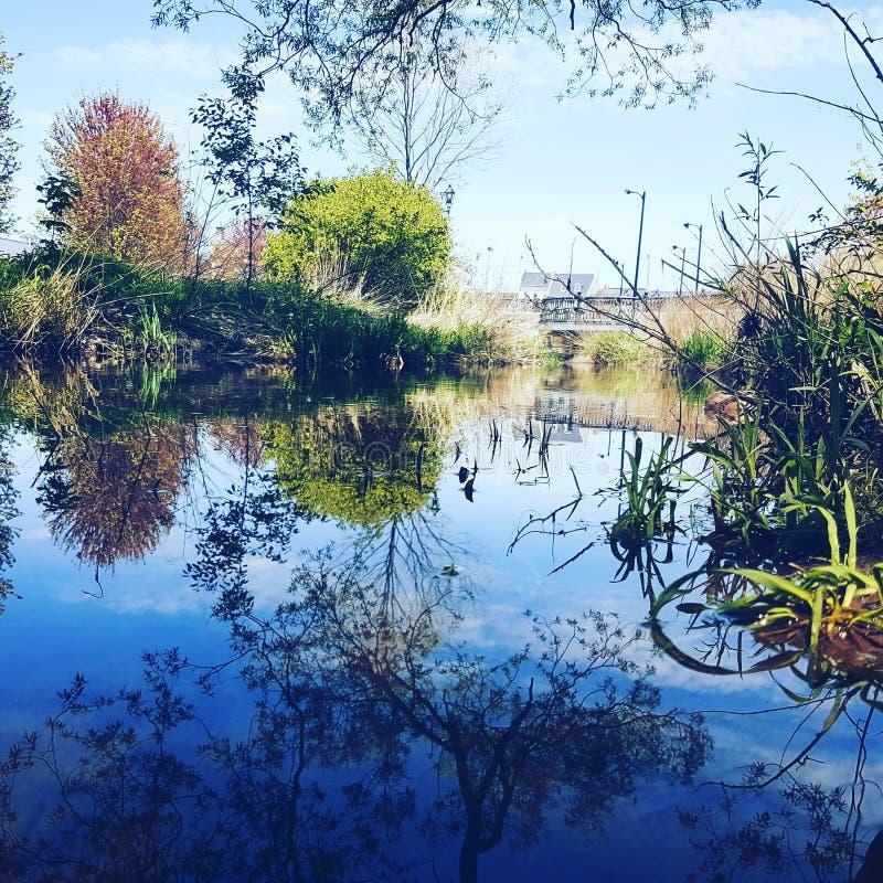 Lago piacevole della spiaggia fotografia stock libera da diritti