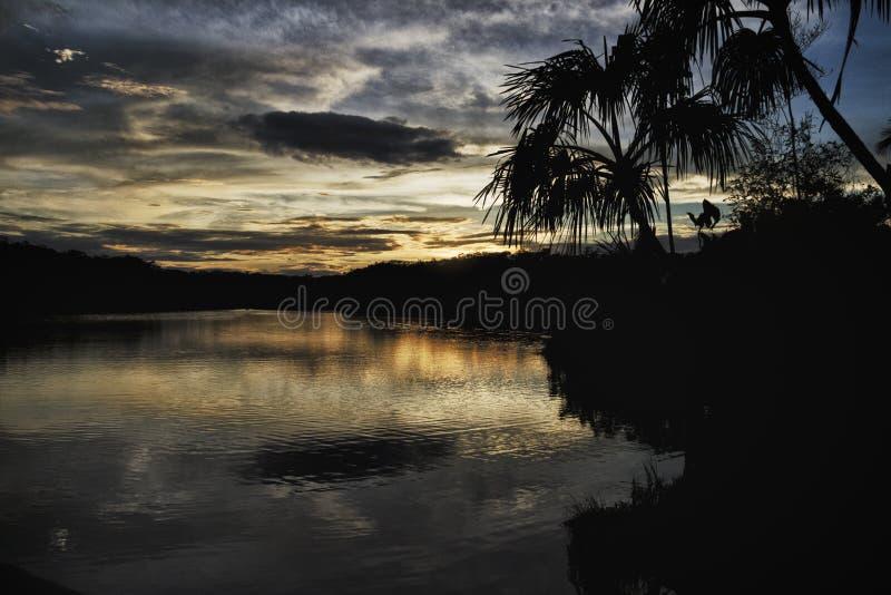 Lago Pilchicocha, bacino di Amazon, Ecuador immagini stock