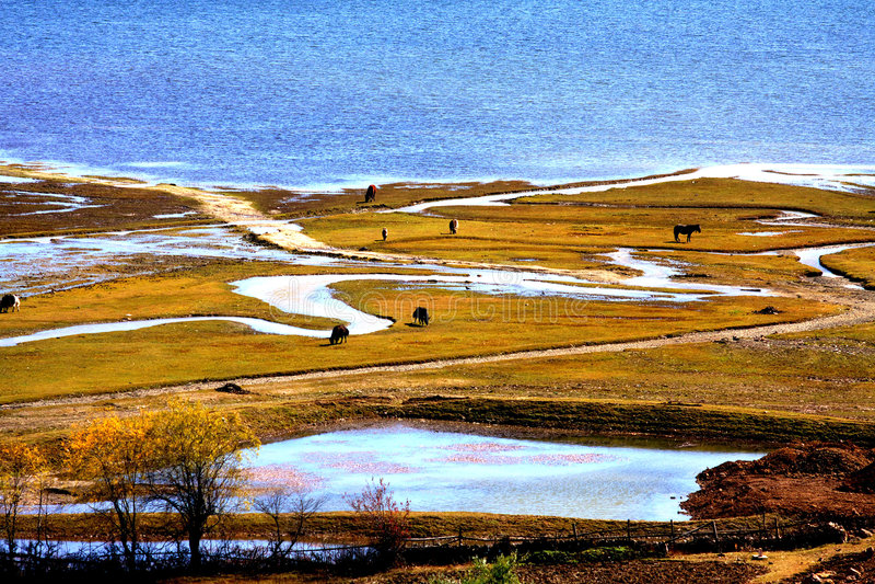 Lago plateau fotografia de stock royalty free