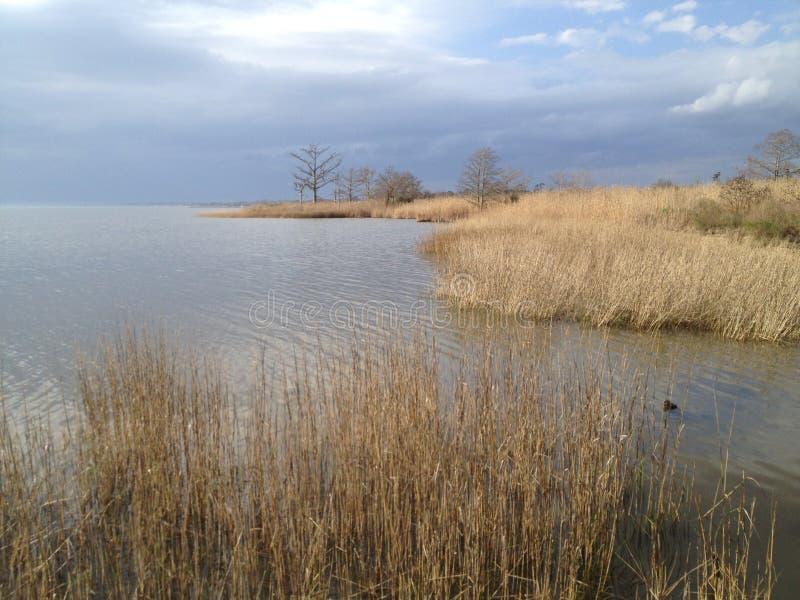 Lago Pontchartrain fotografia stock