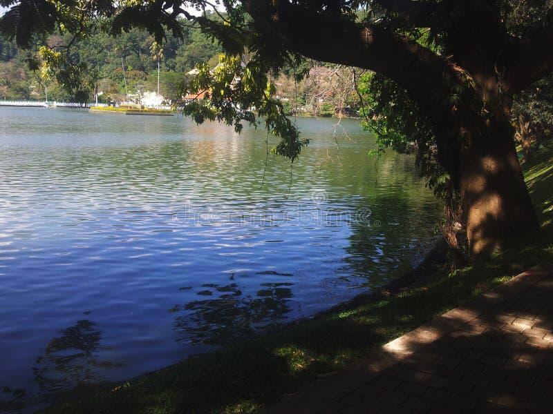 Lago por la tarde fotos de archivo
