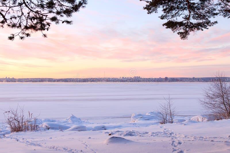 Lago próximo congelado das madeiras do inverno fotos de stock