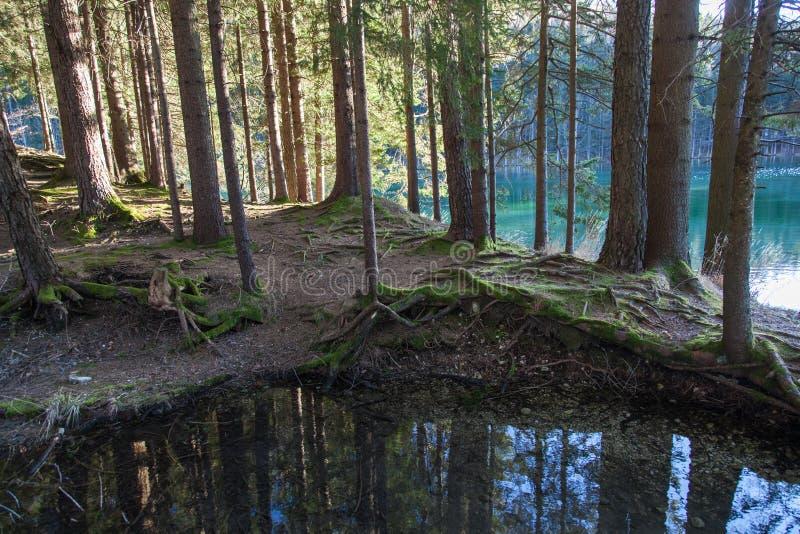 Lago in Preddvor immagine stock
