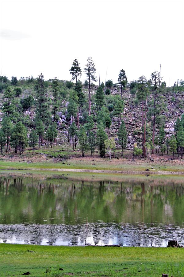 Lago preto canyon, Navajo County, o Arizona, Estados Unidos, floresta nacional de Apache Sitegreaves fotografia de stock