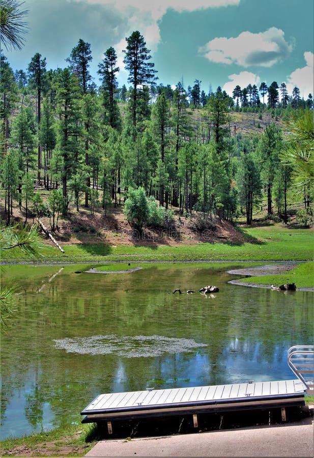 Lago preto canyon, Navajo County, o Arizona, Estados Unidos, floresta nacional de Apache Sitegreaves foto de stock royalty free