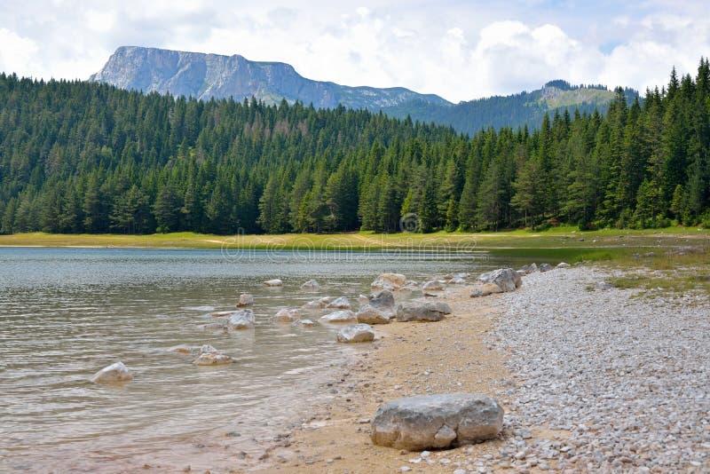 Lago preto (jezero) de Crno - Durmitor fotos de stock royalty free