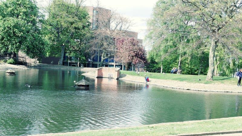 Lago in primavera immagini stock