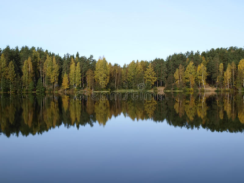 Lago profundo da floresta foto de stock royalty free