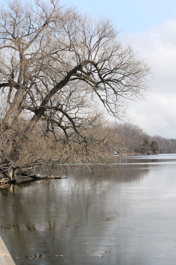 Lago que deshiela la primavera temprana fotos de archivo libres de regalías