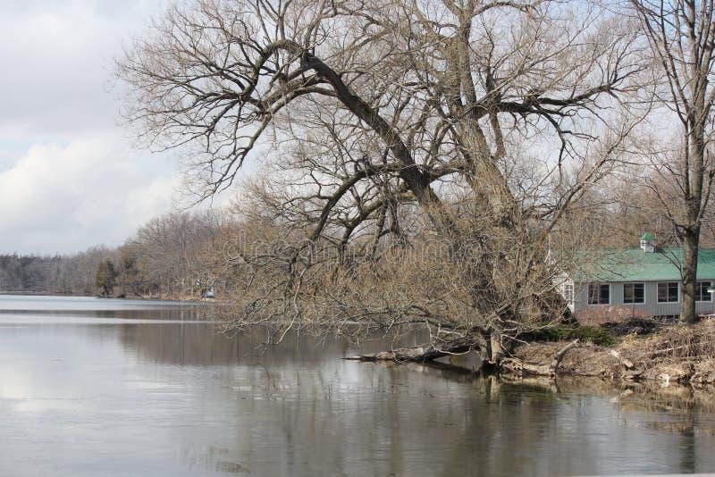 Lago que deshiela la primavera temprana imágenes de archivo libres de regalías