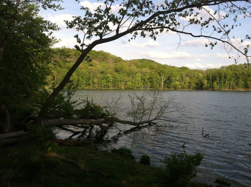 Lago Radnor fotografie stock