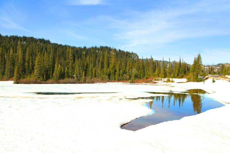 Lago reflection no Monte Rainier foto de stock royalty free