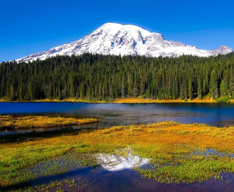 Lago reflection, un parque nacional más lluvioso del Mt rainier imagen de archivo