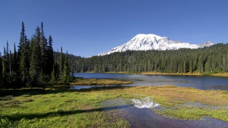 Lago reflection, un parque nacional más lluvioso del Mt rainier imagenes de archivo