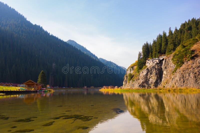 Lago, reflexão, montanha, floresta imagem de stock