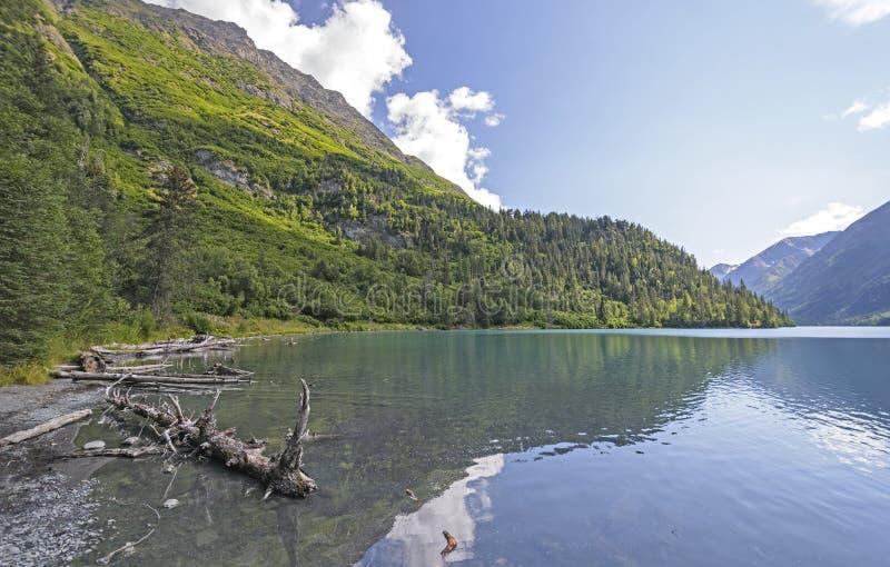 Lago remoto na selva do Alasca imagens de stock