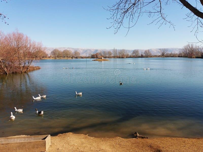 Lago reservado imagen de archivo