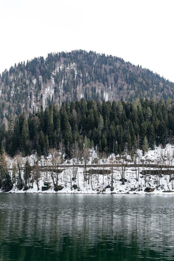 Lago Ritsa en Abjasia en primavera Los tops de la montaña se cubren con nieve El principio de la estaci?n tur?stica imagen de archivo