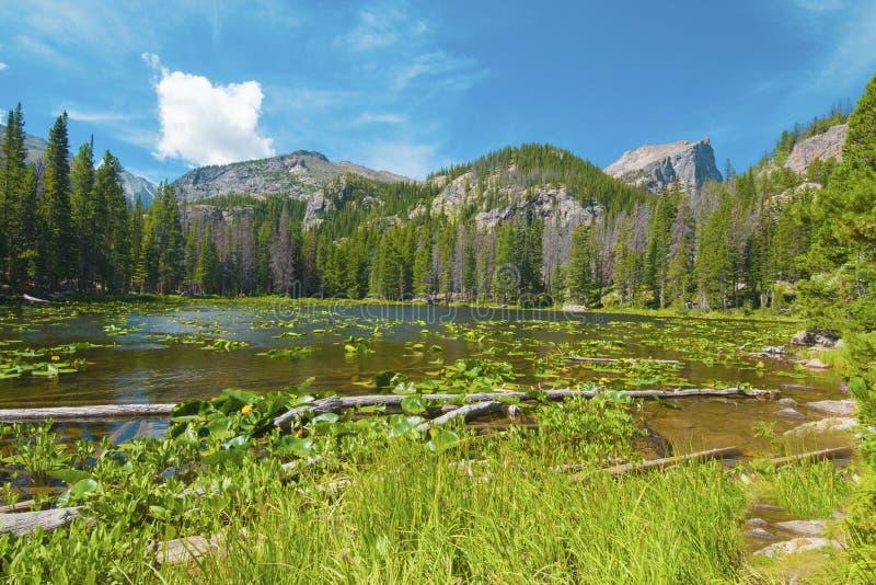 Lago Rocky Mountain National Park nymph fotografia stock libera da diritti
