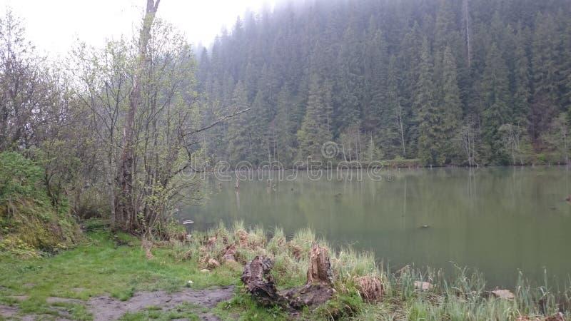 Lago rojo fotos de archivo