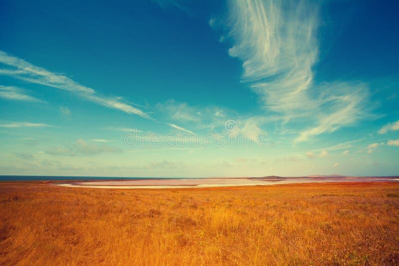 Lago rosa in deserto fotografia stock libera da diritti